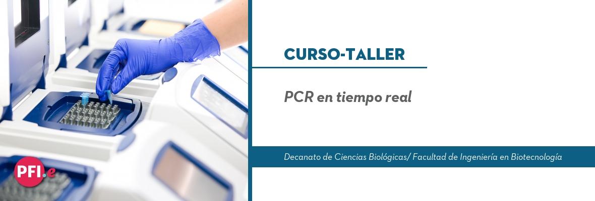 PCRentiemporeal_Banner